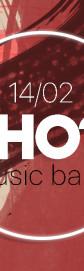 SHO music band - танцы, песни, выпивка и хороводы!